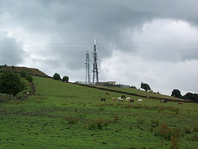 Rivendell horse sanctuary and Idle relay transmitter