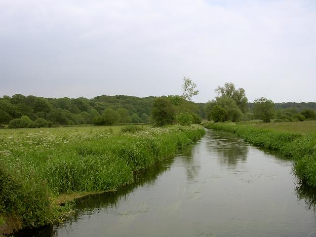 Channel in the Avon floodplain east of Fordingbridge