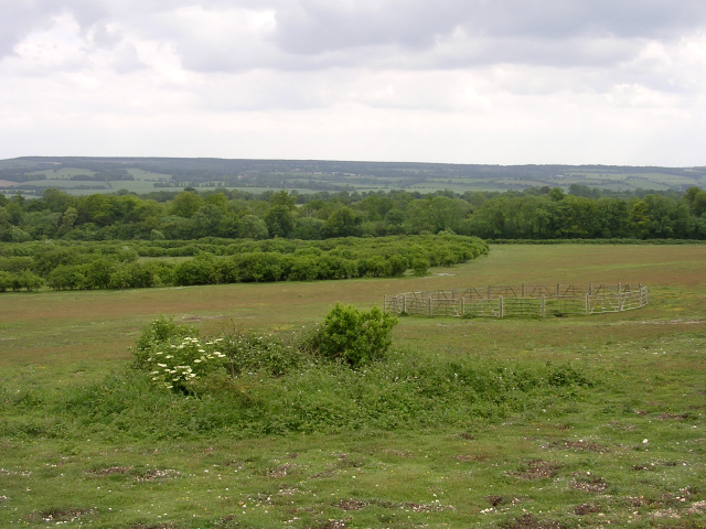 Tumuli on Stockbridge Down, Hampshire