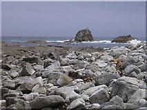 SY8479 : Mupe Rocks by Jim Champion