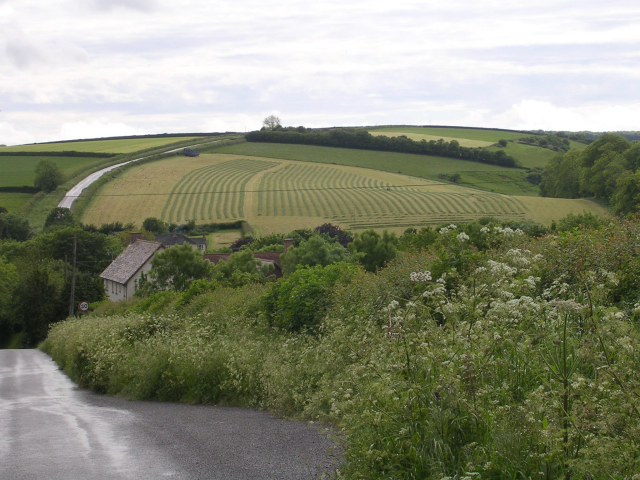 Piddlehinton surroundings