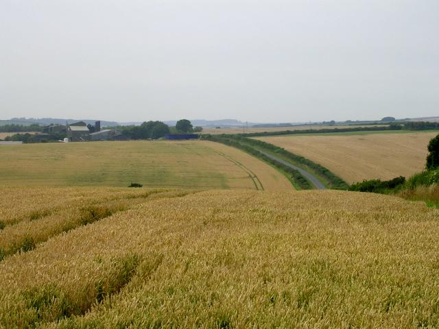 Farmland east of Piddlehinton