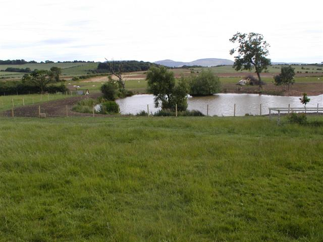Pond at Eastfield Farm