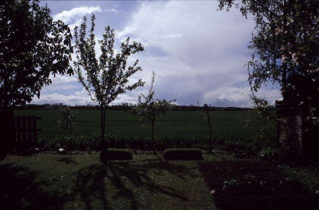 Garden and field at Cridling Stubbs