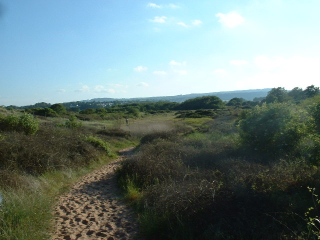 Dawlish Warren nature reserve