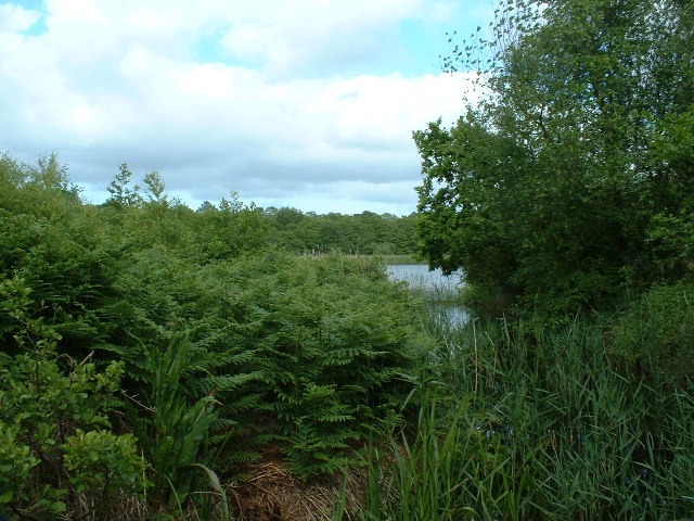 Alderfen Broad:: OS grid TG3519 :: Geograph Britain and Ireland ...