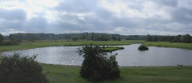 Sturtmoor Pond, Plaitford Common, New Forest