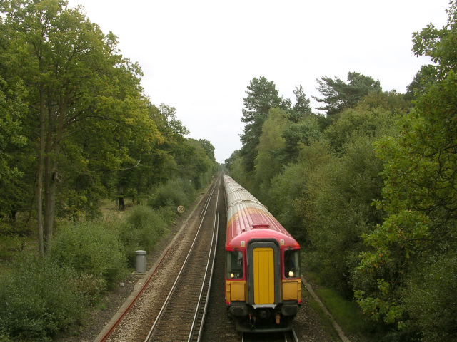 Ashurst-Brockenhurst railway line, north of Ashurst Lodge, New Forest
