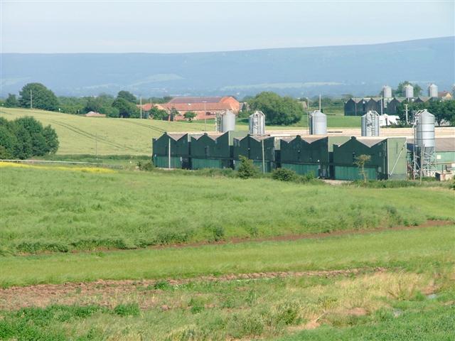 Farm Buildings, Seamer Moor Farm