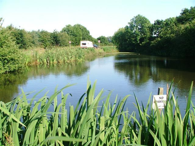 Village Pond, Seamer
