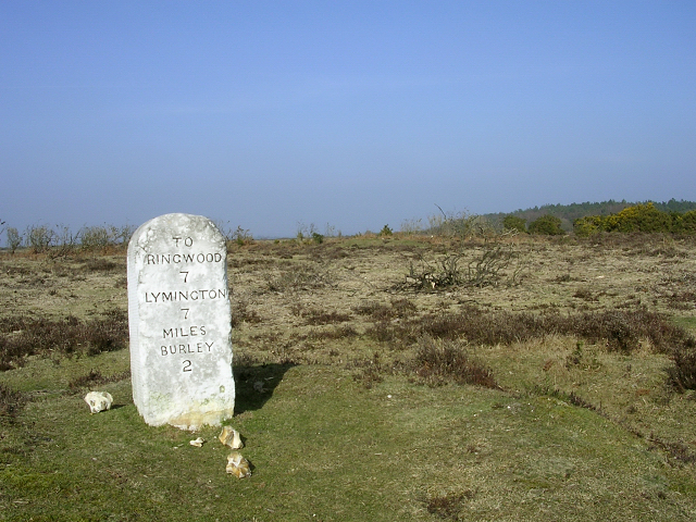 Old milestone on heathland between Clay Hill and Wilverley Post, New Forest