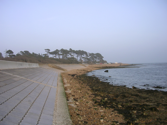 Coastal defences and beach at Lepe