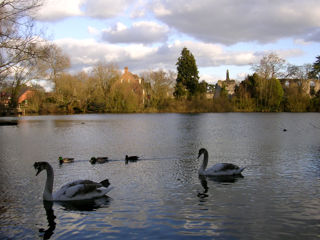 The millpond and Bishop's Palace Ruins, Bishop's Waltham