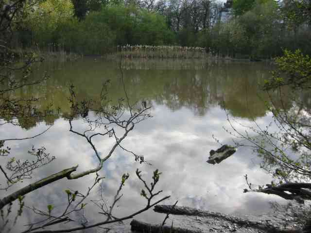 Darlands Lake, Totteridge