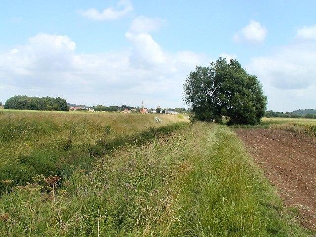 Farmland near Bunny