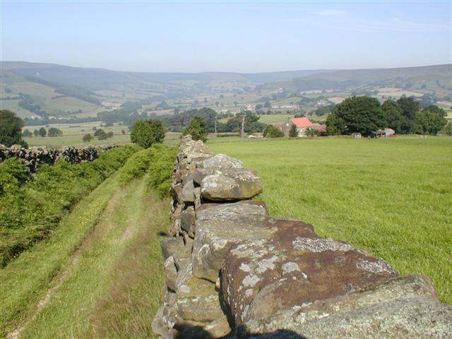 Walled Farm Track, Bilsdale