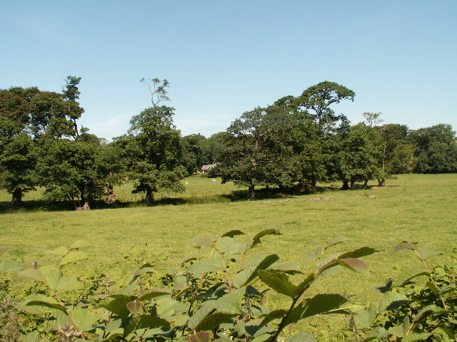 Parkland near Lovesgrove