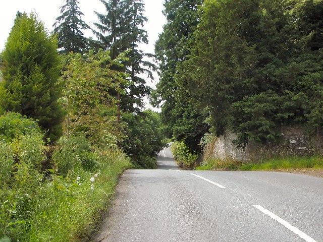 Tree-lined road by Dupplin estate