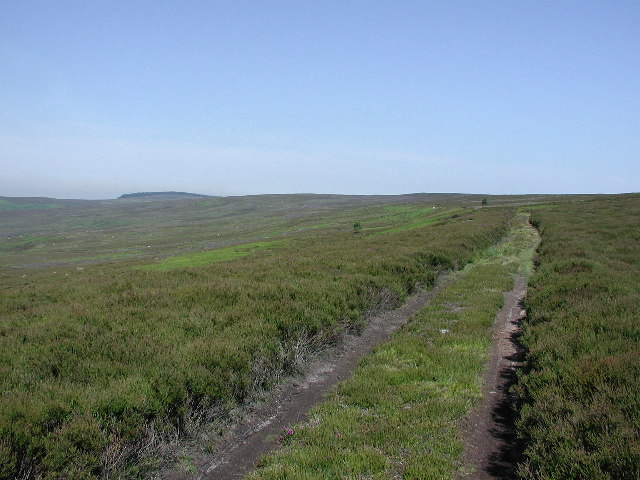 Gamekeepers track over North Ings Moor
