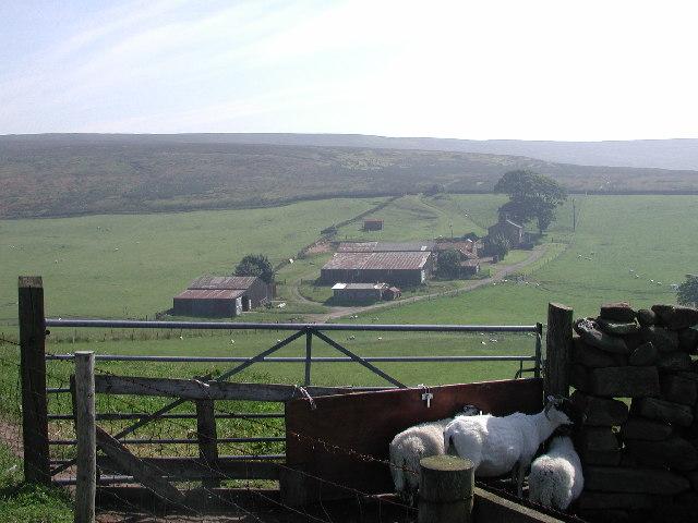 Sleddale Farm and Gisborough Moor
