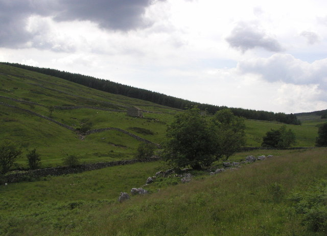 Langstrothdale