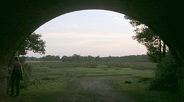 View west under the railway arch near the Fulliford Passage, New Forest