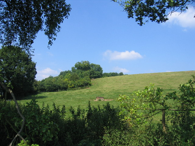 View from the Monarch's Way
