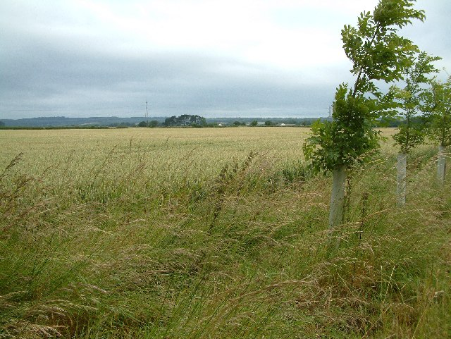 Farmland, Crossways