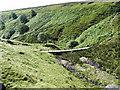 SE0531 : Ogden Clough by John Illingworth