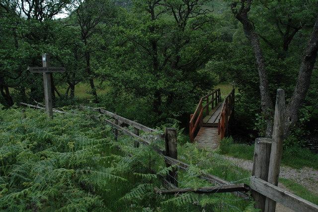 Footbridge on Southern Upland Way, Glen Trool