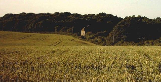 View near Bonnington