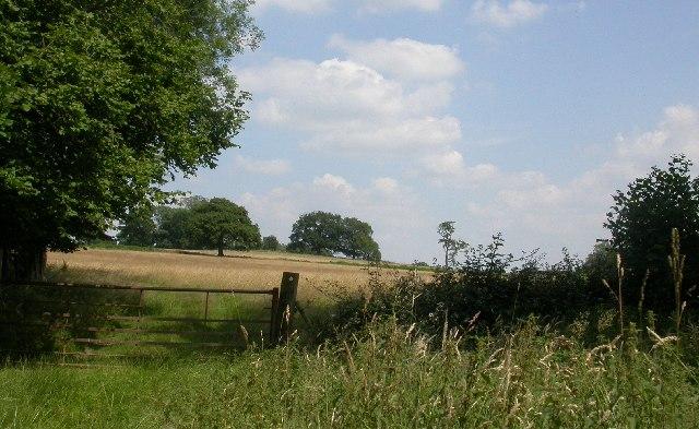 Rural Surrey