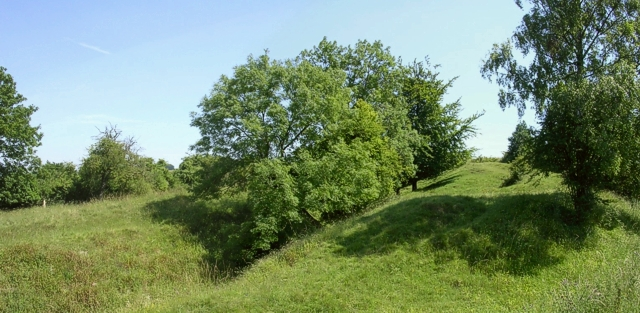 """""""The Dongas"""" hollow ways, Twyford Down"""