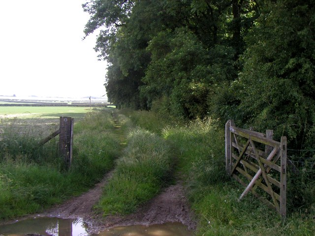 Bridleway scene