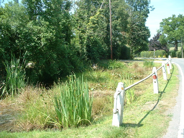 Roadside pond at Blank's Farm