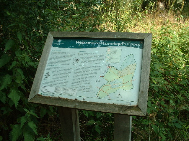 Information point at the Woodland Trust's Hammond's Copse