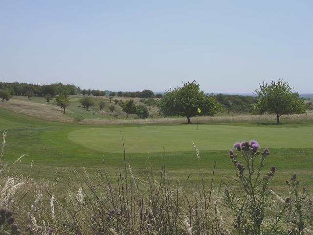 Northern corner of Hockley golf course, Twyford Down