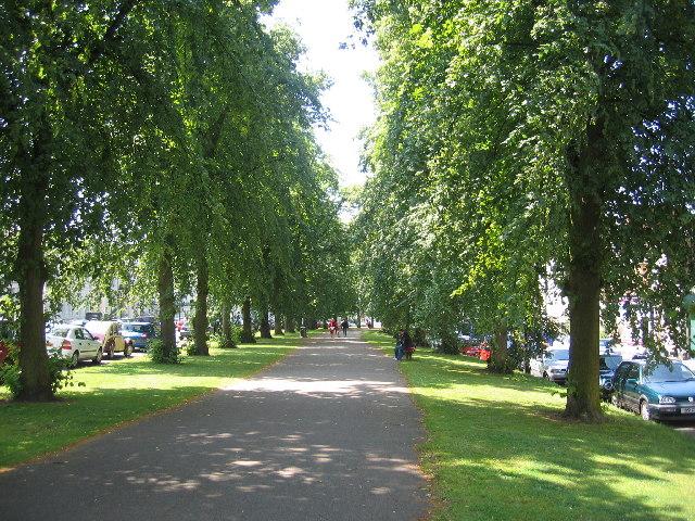 Regent Grove and Hamilton Terrace, Royal Leamington Spa