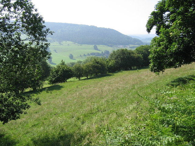View from Laskill Lane