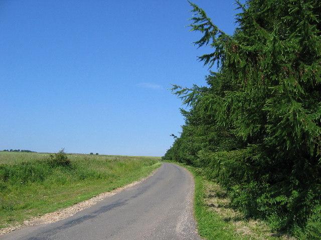 Peak Scar Road