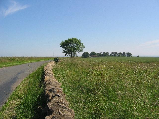 Farmland near Sneck Yate