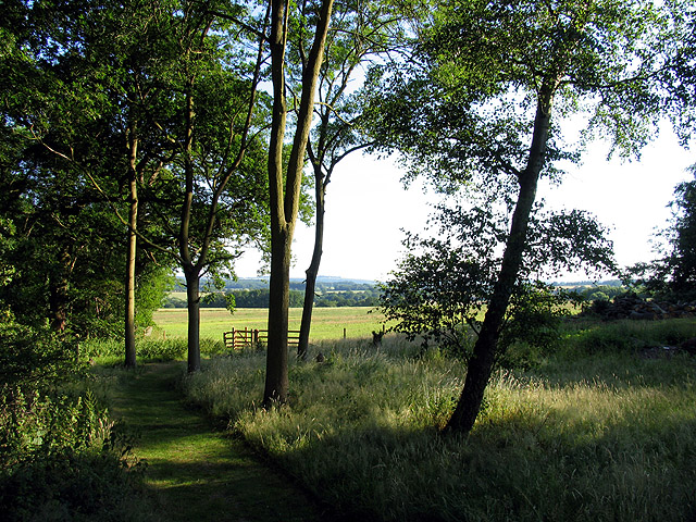 Footpath at Hyde End Wood