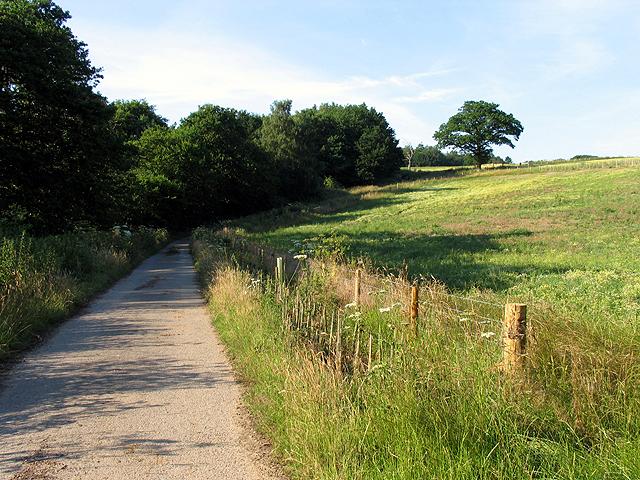Bridleway/Byway near Bridge Park Gulley: Brimpton