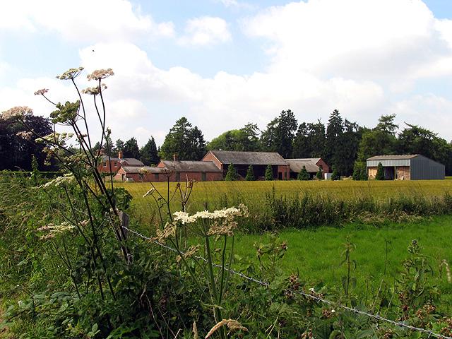 Farm near Woodlands St Mary
