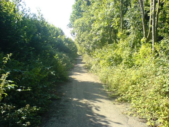 Derelict Road