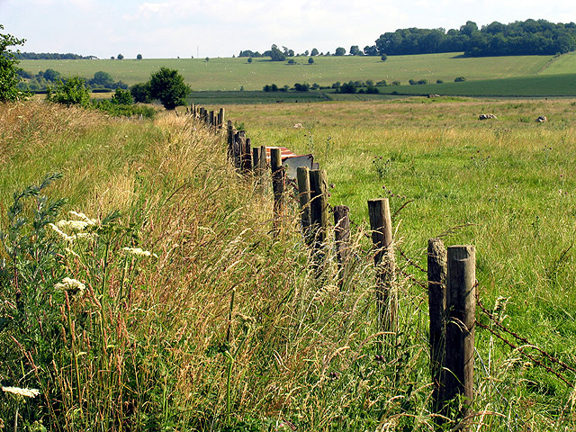 Farmland and Byway near Upper Lambourn