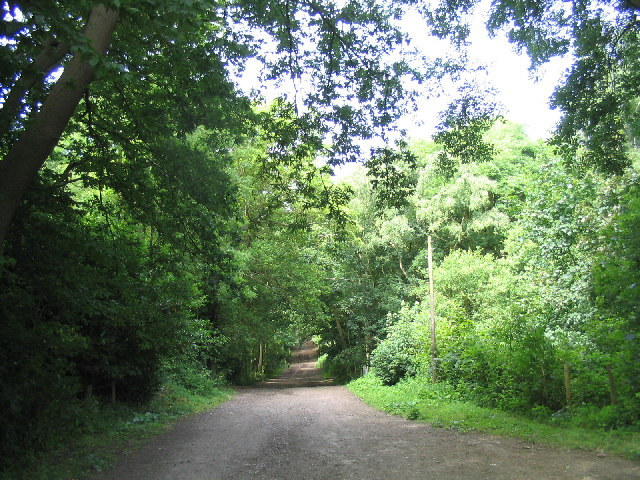 Havering Country Park, Collier Row, Essex