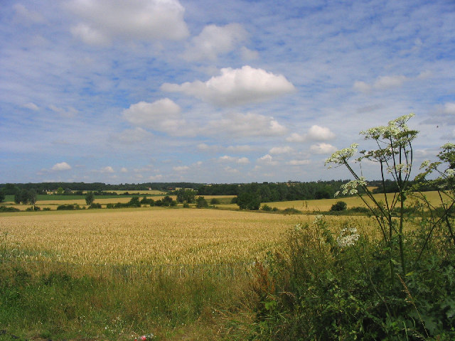 Wheatfield, Shonks Mill Road, Navestock Heath, Essex