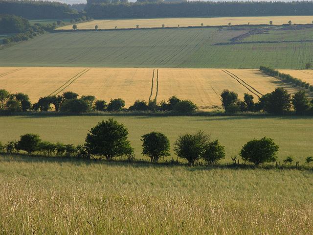 Farmland at Uffington Castle Fort