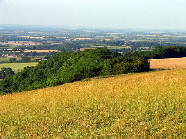 Uffington Wood
